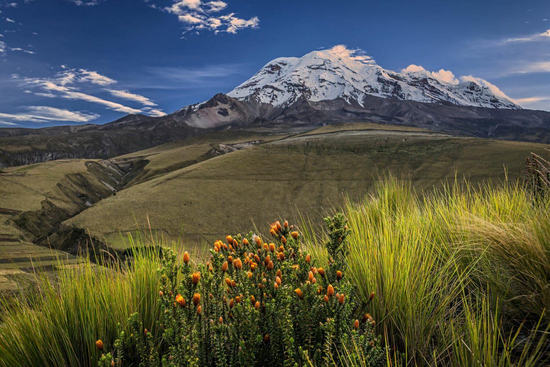 Chimborazo volcano at dawn and Chuquirahua
