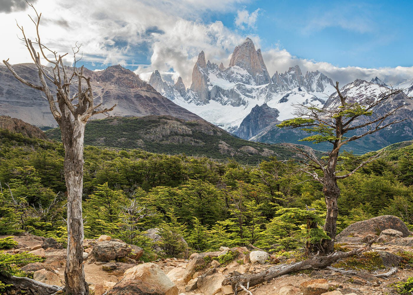 View of the Fitz Roy mountain range and trees